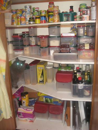 Samantha, laser-eyed defender of the pantry