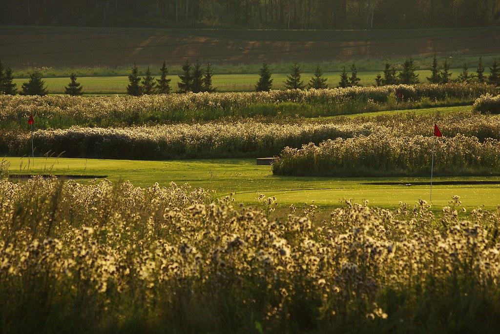 Golf 061