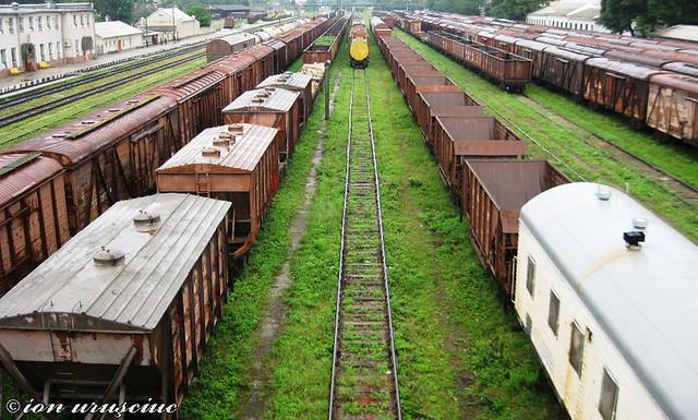 Trenuri-BL (3)