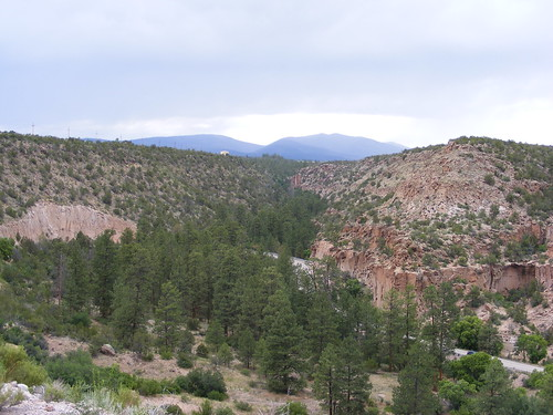 Picture from the Jemez Mountains