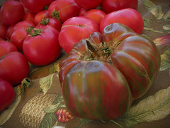 heirlooms at 24th Street Farmers' Market