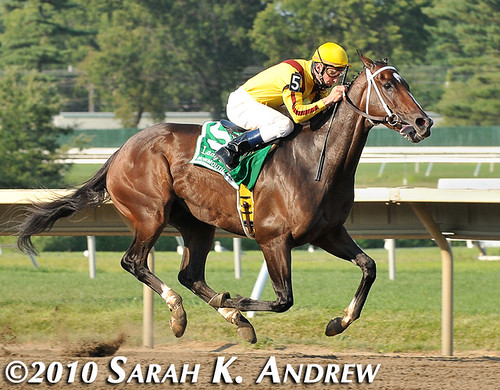 Rachel Alexandra and Calvin Borel win the Lady's Secret Stakes
