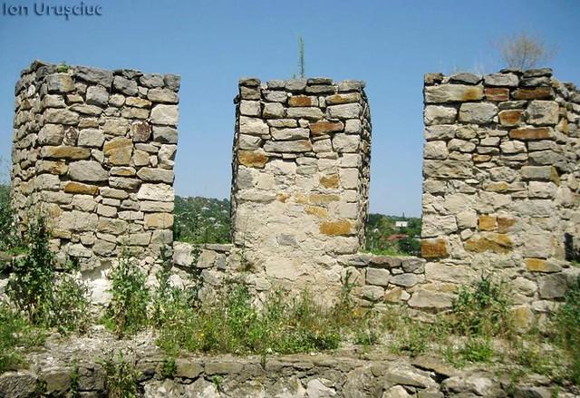 Cetatea Soroca (3)