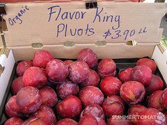 Flavor King Pluots