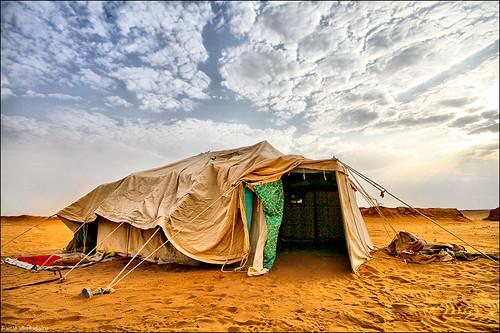 ???? | Tent [EXPLORED]