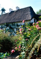 Cottage in Stradbally