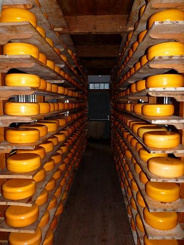 Hier ist der Käse!