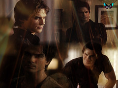 Damon Salvatore Wallpaper