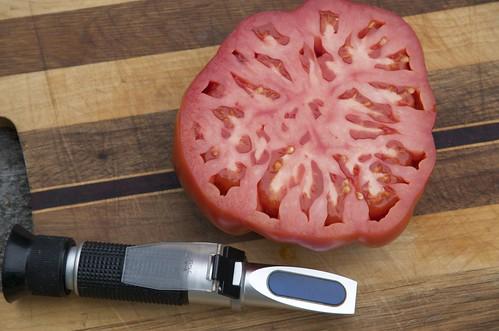 Grouse Mountain tomato