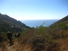 Big Sur, Bay Area Expeditions