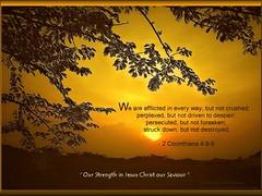 42: Daily Inspirational Bible Verse