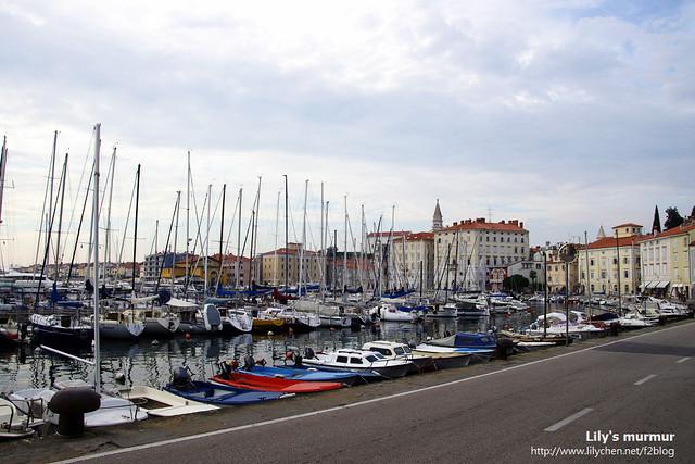一路上的遊艇,提醒著你這裡可是斯洛維尼亞濱海的渡假聖地Piran喔!