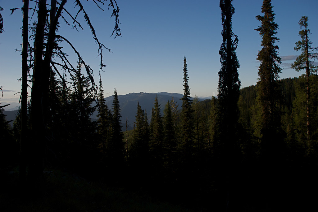 Early morning view of Eddy Peak from trail 478