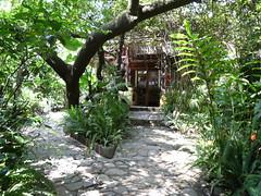 "Dschungelfeeling im Hotel ""La Paz"", San Marcos"