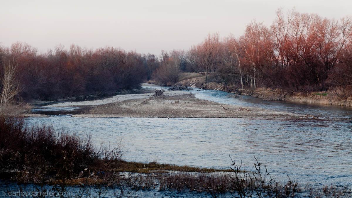 Río Gállego - desembocadura