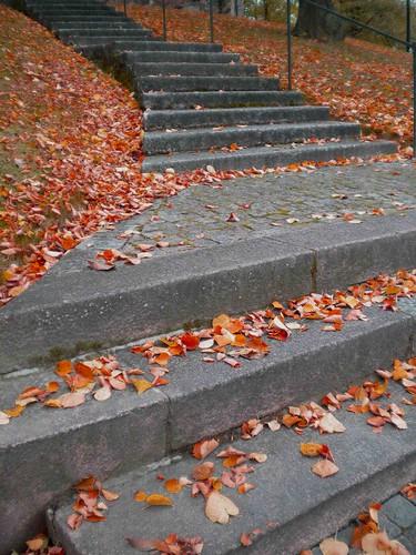 cathedral (back) steps
