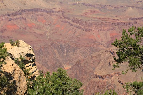 Day 5: Grand Canyon