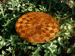 Laser-cut wood spirals in nature