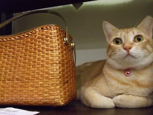 Estee&wicker handbag