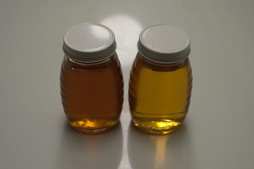 Dark fall honey vs light spring honey