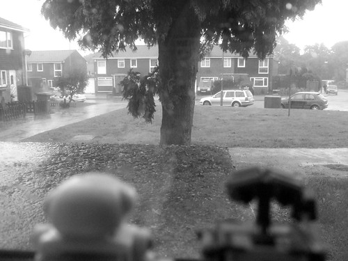 Day 51 - Rain Stops Play