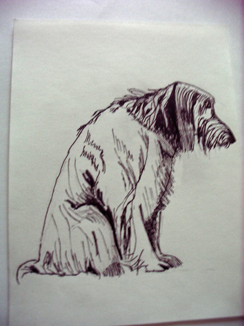 Dog - ink drawing