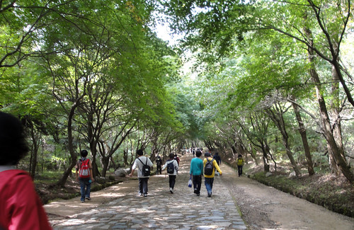 Walking to Bulguksa