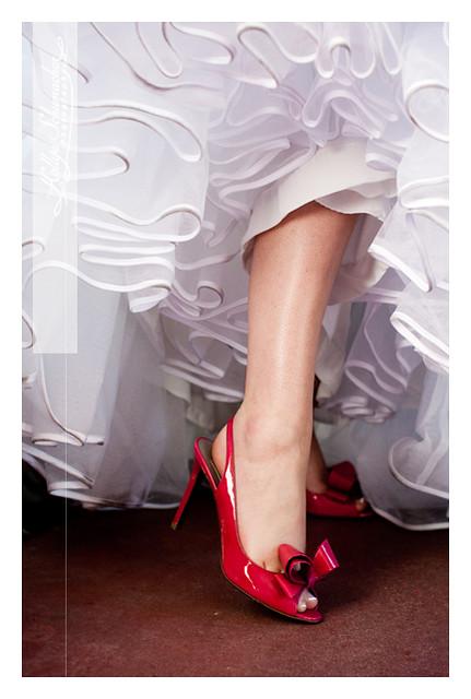 Lulu's Shoes, by Hollye Schumacher