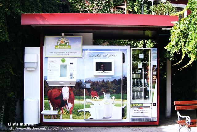 發現生乳販賣機!!來斯洛維尼亞發現這台機器時,請務必嘗試一下這裡的新鮮生乳喔!