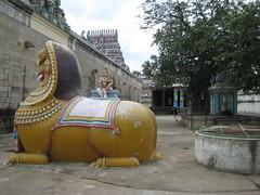 Singa Kinaru (Lion well)