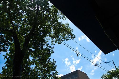 suddenly sunny