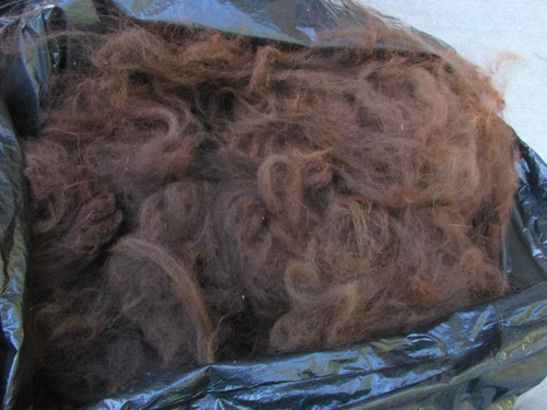 Alpaca Fleece from Last Year