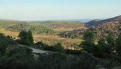 Road to Smokvica