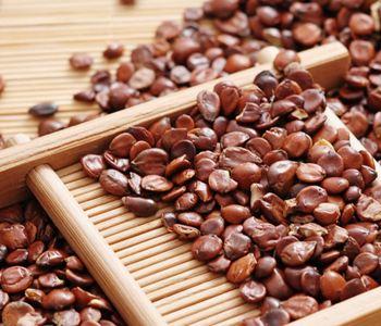 Tips  Semen ziziphi spinosae has medicinal and soothe the liver 33572751874_a30b0e071f_o