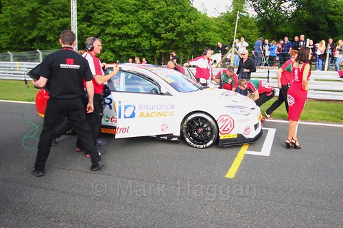Daniel Lloyd on BTCC grid at Oulton Park, May 2017