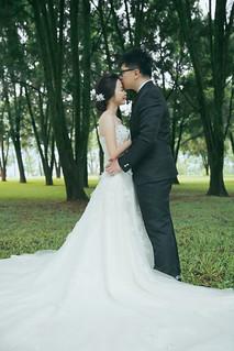 Pre-Wedding [ 中部婚紗 – 森林草原系列海邊 ] 婚紗影像 20160811 - 9