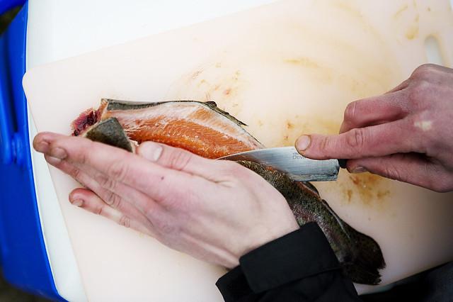 Fishing_39