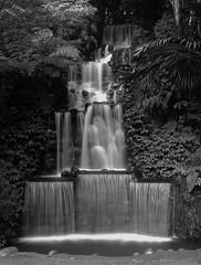 Pukekura Park Waterfall B&W