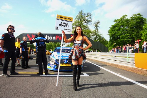 Aiden Moffat on the BTCC grid at Oulton Park, May 2017