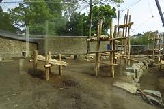 303 - 2017 06 10 - Chimpanseeverblijf in aanbouw
