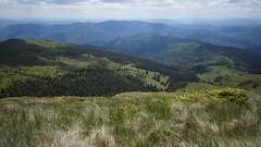 Valea Cernatu