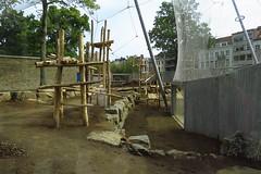 304 - 2017 06 10 - Chimpanseeverblijf in aanbouw