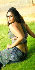 Indian Actress Ramya Hot Sexy Images Set-2  (72)