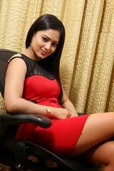 Indian Actress NIKESHA PATEL Hot Sexy Images Set-2  (16)