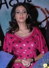 Indian Actress SADA Photos Set-4 (15)