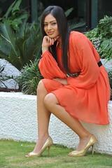 Indian Actress NIKESHA PATEL Hot Sexy Images Set-1 (93)