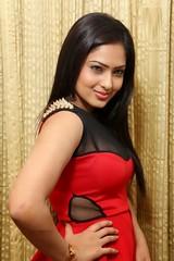 Indian Actress NIKESHA PATEL Hot Sexy Images Set-2  (25)