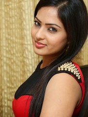 Indian Actress NIKESHA PATEL Hot Sexy Images Set-2  (19)