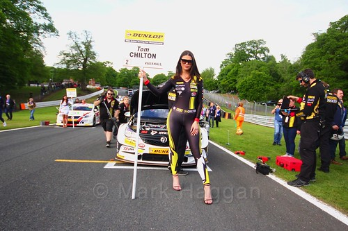 Tom Chilton on the BTCC grid at Oulton Park, May 2017