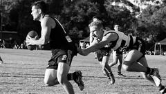 Balmain Tigers v Camden Cats AFL Division1 May 27 2017 000111